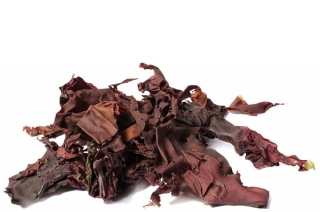 Dulse celý list 50g BIO RAW Lifefood
